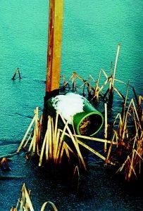 Piquet bois 2 m pour nichoir flottant en plastique