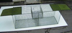 Cage à renard