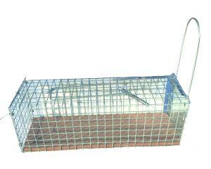Cage à rats